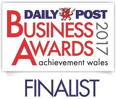 Daily Post Business Awards 2017